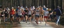 Florida Running Club Reviews